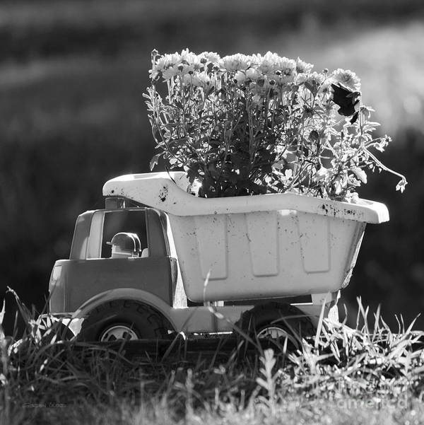 Canada Poster featuring the photograph Toy Truck Planter by Gordon Wood