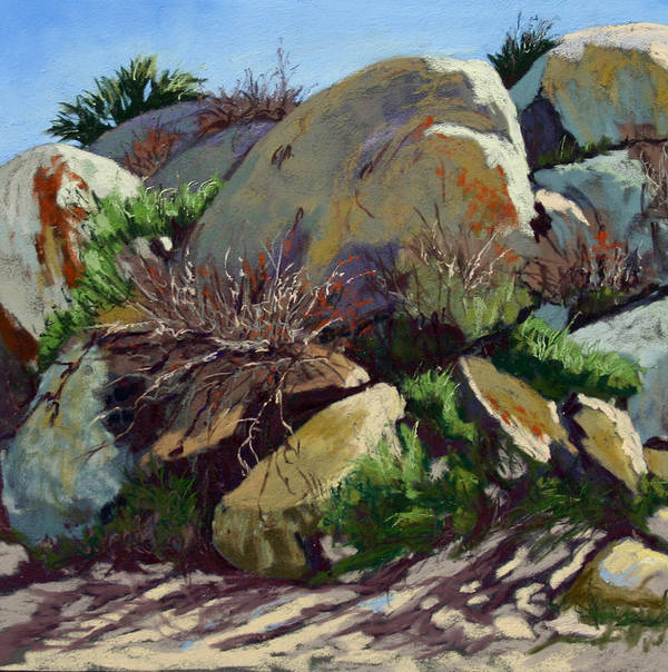Plein Air Pastel Landscape. Poster featuring the pastel Rocks And Weeds II by Patricia Rose Ford