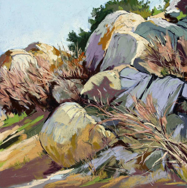 Plein Air Pastel Landscape. Poster featuring the pastel Rocks And Weeds by Patricia Rose Ford