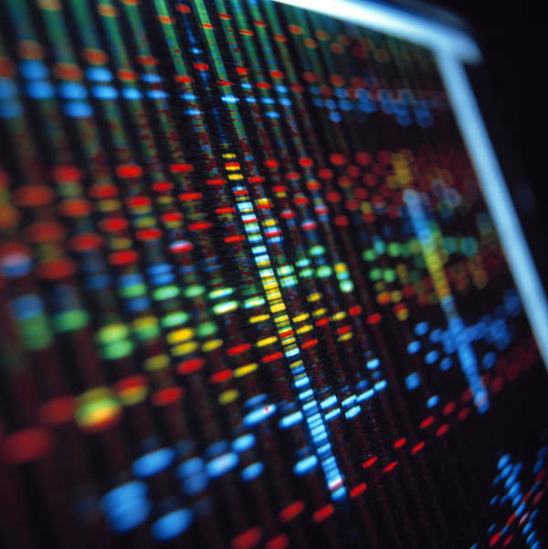 Genetic Sequence Poster featuring the photograph Dna Sequence On A Computer Monitor Screen by Tek Image