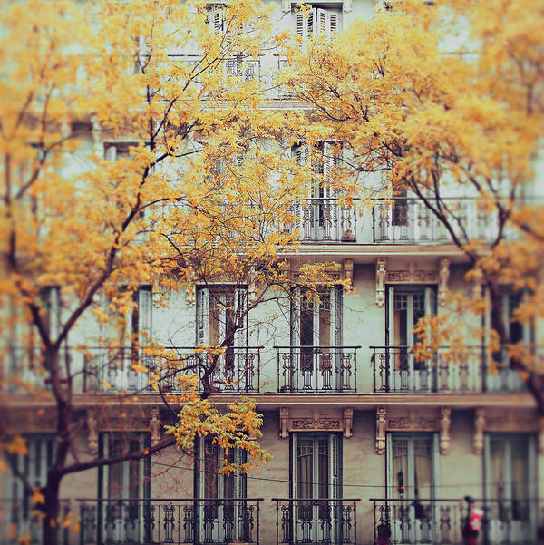 Vertical Poster featuring the photograph Madrid Facade In Late Autumn by Julia Davila-Lampe