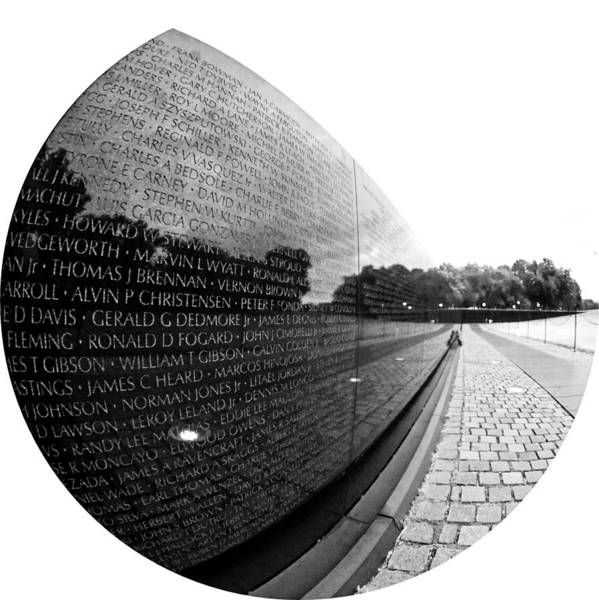 Vietnam Memorial Poster featuring the photograph Names by Mitch Cat