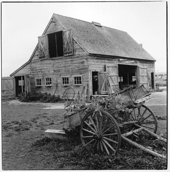 Martha's Vineyard Poster featuring the photograph Old Barn by Rose Martin
