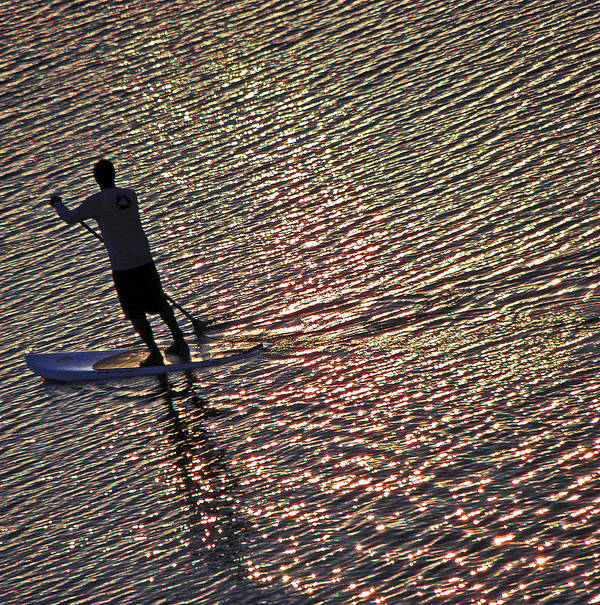 Paddle Board Poster featuring the photograph Paddling The Pacific by Elizabeth Hoskinson