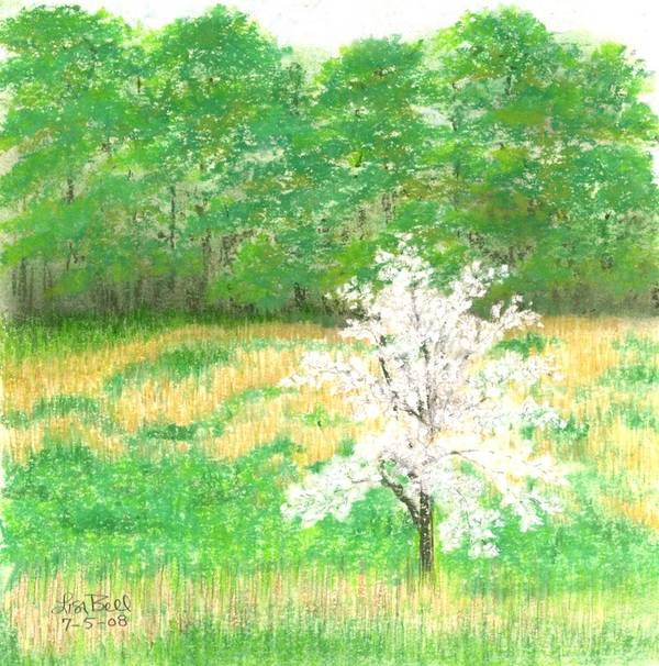 Landscape Poster featuring the painting Studio Windows-7-5-08-dogwood by Lisa Bell