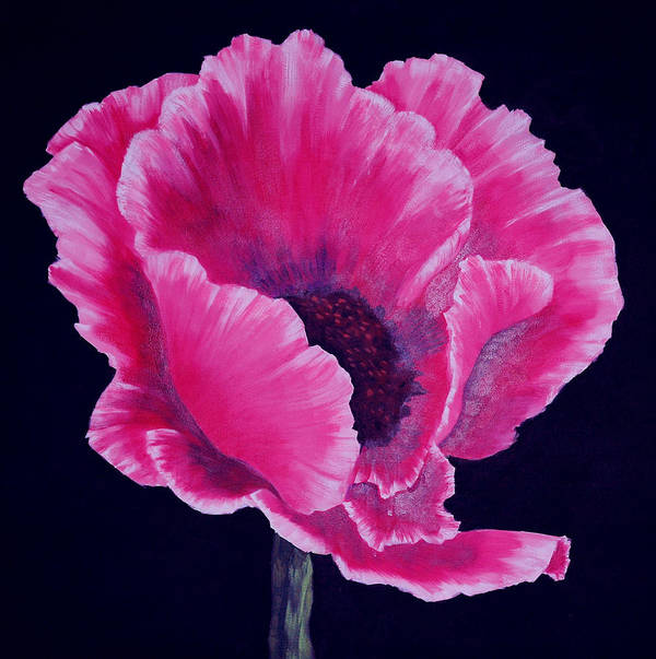 Floral Poster featuring the painting Pink Poppy by SueEllen Cowan