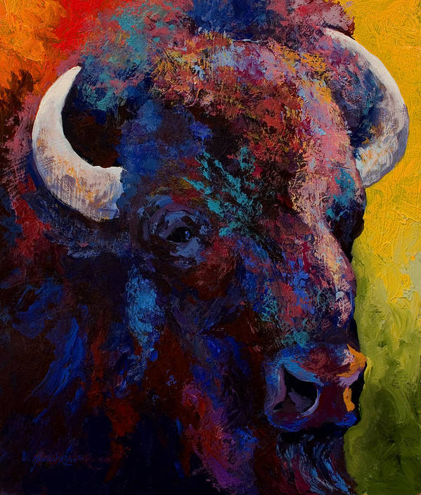 Bison Poster featuring the painting Bison Head Study by Marion Rose
