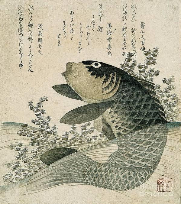 Fish Poster featuring the painting Carp among pond plants by Ryuryukyo Shinsai