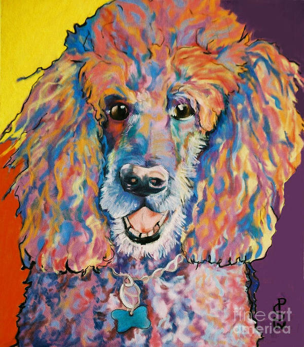 Standard Poodle Poster featuring the painting Cole by Pat Saunders-White