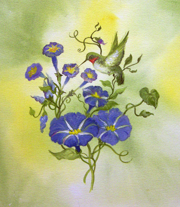 Hummingbird;bird;morning Glories;flowers;watercolor Painting; Poster featuring the painting Hummingbird in the Morning by Lois Mountz
