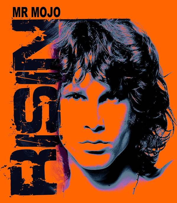 The Doors Poster featuring the digital art Mr Mojo Risin by Mal Bray