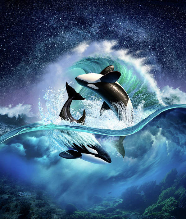 Orca Poster featuring the digital art Orca Wave by Jerry LoFaro