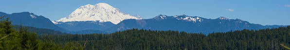 Panoramic Poster featuring the photograph Panoramic Rainier Rt.25 by Tikvah's Hope