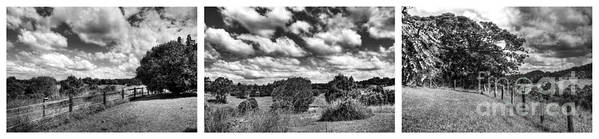 Photography Poster featuring the photograph Cloudy Countryside Collage - Black And White by Kaye Menner