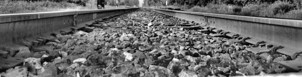 Train Poster featuring the photograph Train Tracks by Dan Sproul