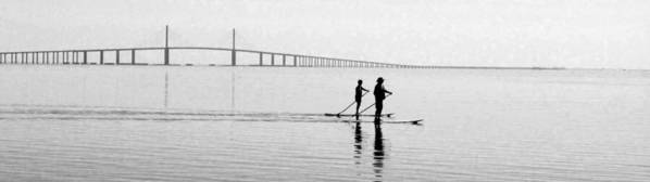 Paddles Poster featuring the photograph A Morning Glide by Laura Holt