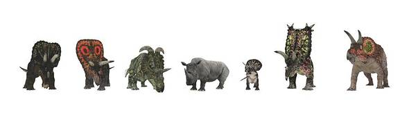 Nedoceratops Poster featuring the photograph Cerapod Dinosaurs Compared To A Rhino by Walter Myers