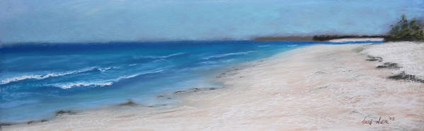 Landscape Poster featuring the pastel Afternoon On Honeymoon Island by Greg Neal