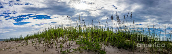 Florida Poster featuring the photograph Sea Oats Sand Dune Sky by Nancy L Marshall