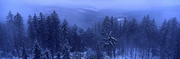 Away From It All Poster featuring the photograph Bavarian Forest In Winter by Ulrich Kunst And Bettina Scheidulin