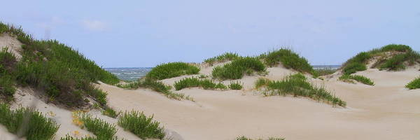 Dune Poster featuring the photograph Dunes And Grasses 6 by Cathy Lindsey