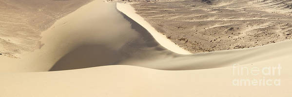 Dune Poster featuring the photograph Great Dune At Aswan by Neil Pollick