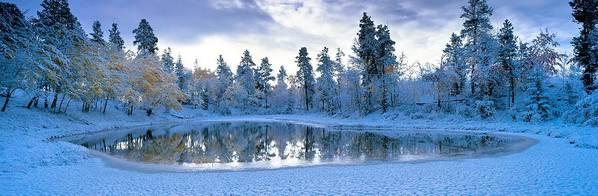 Lake Poster featuring the photograph Snowy Lake by David Nunuk