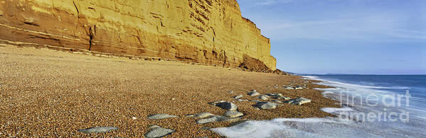 Golden Cliffs Poster featuring the photograph Burton Bradstock Beach by Rod McLean