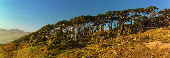 Sutro Heights Park Poster featuring the photograph Lands End by Greg Reed