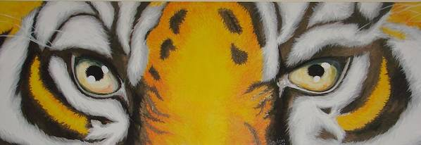 Tiger Poster featuring the painting Tiger Eyes by Glory Fraulein Wolfe