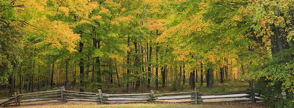 3scape Photos Poster featuring the photograph Autumn In Door County by Adam Romanowicz