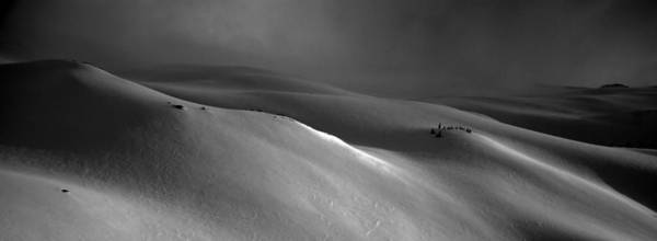 Snow Poster featuring the photograph Snowscape by Alasdair Turner