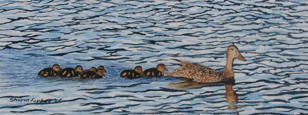 Ducks Poster featuring the painting Follow The Leader by Sharon Farber