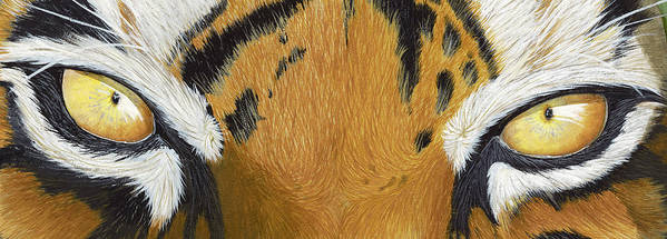 Tigers Eye Poster featuring the painting Tigers Eye by Laurie Bath