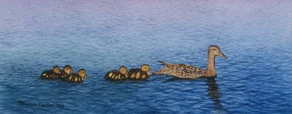 Duck Poster featuring the painting Follow The Leader II by Sharon Farber