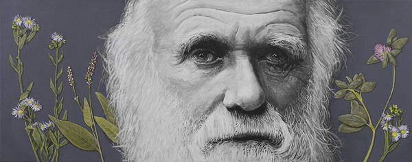 Evolution Poster featuring the painting Sandwalk Wood- Charles Darwin. by Simon Kregar