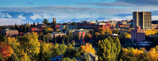Washington State University In Autumn Poster featuring the photograph Washington State University In Autumn by David Patterson