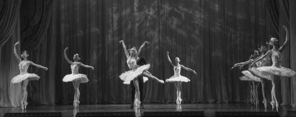 Hermitage Poster featuring the photograph Swan Lake White Adagio Russia 4 by Clare Bambers