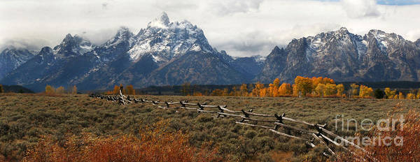 Tetons Poster featuring the photograph Tetons Fenceline by Clare VanderVeen