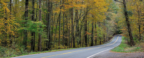 Blueridge Parkway Poster featuring the photograph Blueridge Parkway Virginia by Todd Hostetter