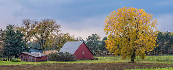 Landscape Poster featuring the photograph Farmstead With Fall Colors by Paul Freidlund
