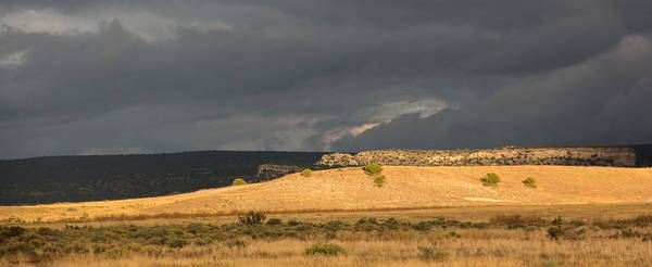 Panoramic Poster featuring the photograph A Brewing Storm by Spirit Vision Photography