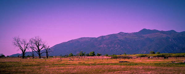 Taos Poster featuring the photograph Late Afternoon In Taos by David Patterson