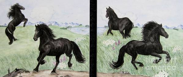 Friesian Horses Poster featuring the painting Friesian Horses At Play by Sandra Maddox
