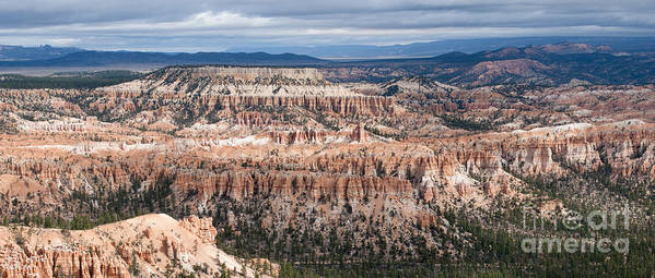 Bryce Canyon National Park Poster featuring the photograph Bryce Canyon Overlook by Sandra Bronstein