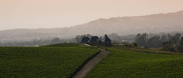 Napa Poster featuring the photograph Napa Valley by Peter Verdnik