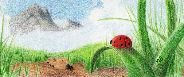Lady Bug Poster featuring the drawing The Small Things by Nils Bifano