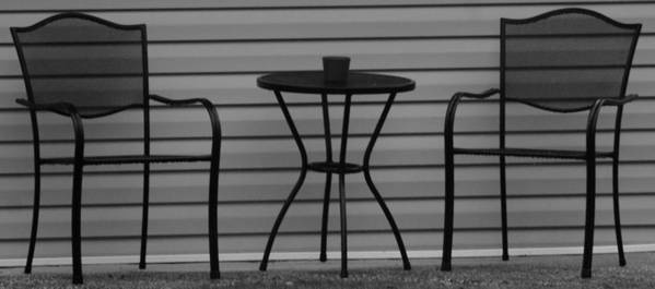 Macro Poster featuring the photograph The Patio In Black And White by Rob Hans