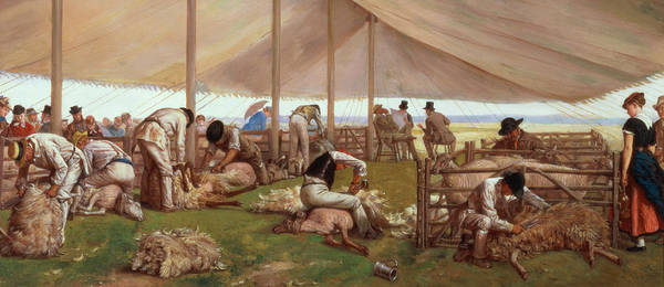 The Poster featuring the painting The Sheep Shearing Match by Eyre Crowe