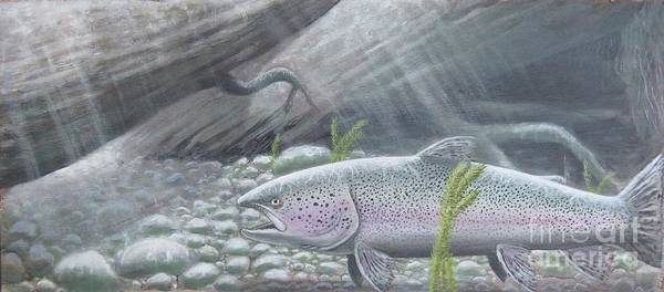 Trout Poster featuring the painting Shelter- Rainbow Trout by Max Teasdale
